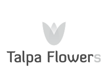 Talpa Flowers